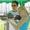 Выездной арбалетно-лучный тир «Серебряная Стрела» в Ставрополе #115610