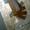 Лопатки УВБ 01.001А на Вакуумный насос МЖТ УВА 12.000 МЖТ-6,  МЖТ-11,  МЖУ-16 #783222