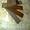 Лопатки УВБ 01.001А на Вакуумный насос МЖТ УВА 12.000 МЖТ-6, МЖТ-11, МЖУ-16 - Изображение #3, Объявление #783222