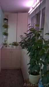 Освещение декоративных растений - Изображение #1, Объявление #1605312
