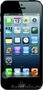 Смартфон Apple iPhone 5s – новый, полный помплект, гарантия Ставрополь, Объявление #1055036