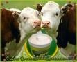 Пробиотик для стимуляции роста и сохранности  животных, птиц, рыб
