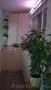 Освещение декоративных растений - Изображение #2, Объявление #1605312