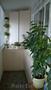 Освещение декоративных растений